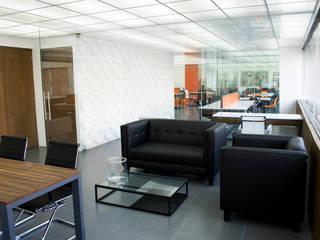 Oficinas GDV CONSULTORES Estudios y despachos modernos de Tema Arquitectos Moderno