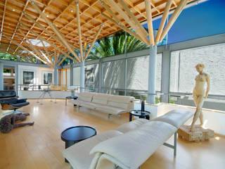 Lounge & Roof Structure:  Living room by Van der Merwe Miszewski Architects