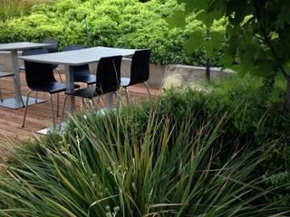 Sector terraza café : Edificios de Oficinas de estilo  por Bächler Paisajismo