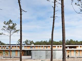 Banema S.A. 地板 複合木地板 Wood effect