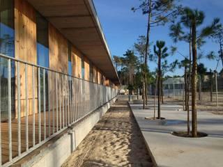 Banema S.A. 地板 木頭 Wood effect
