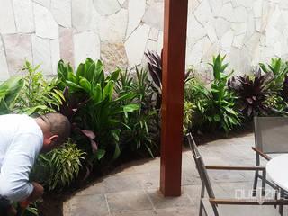 Tropical style balcony, veranda & terrace by Quetzal Jardines Tropical