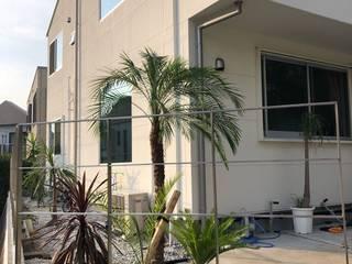 Puertas y ventanas de estilo tropical de 株式会社ムサ・ジャパン ヴェルデ Tropical