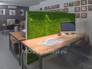 Офис «open space» - оформление офиса перегородками со стабилизированным мхом Офисные помещения в стиле модерн от MOSSwallRU Стабилизированный Мох Модерн
