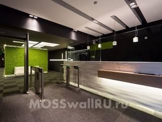 Проект оформления EUANIS стабилизированным мхом Офисные помещения в стиле модерн от MOSSwallRU Стабилизированный Мох Модерн
