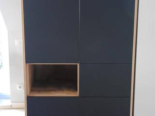 Kundenstimmen - stilvolle Wohnzimmerschränke: modern  von passandu.de - Möbel wie ich sie will,Modern