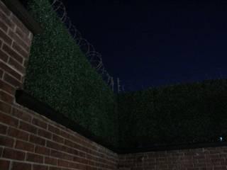 Muro Verde: Albercas de estilo  por SARQ SM