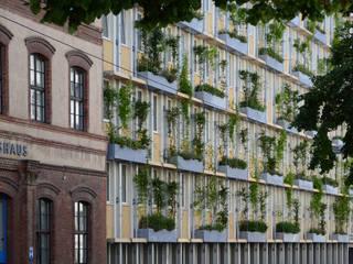 Amtshaus Wiener Wasser MA 31, Grabnergasse:  Bürogebäude von RATAPLAN - Architektur ZT GmbH