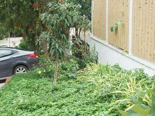 PRE-FAB VILLA in Gachibowli Minimalist style garden by iammies Landscapes Minimalist