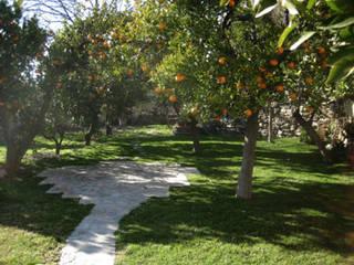 Casa Larga de Mirasur Proyectos S.L. Rural