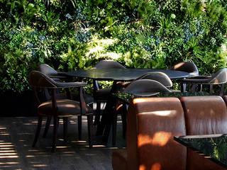 Wonder Wall - Jardins Verticais e Plantas Artificiais Balcones y terrazas modernos