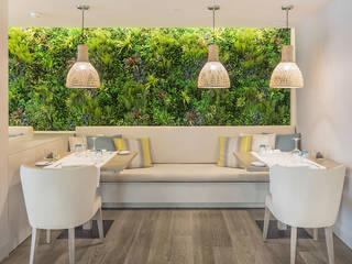 โดย Wonder Wall - Jardins Verticais e Plantas Artificiais โมเดิร์น