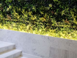 Modern style gardens by Wonder Wall - Jardins Verticais e Plantas Artificiais Modern