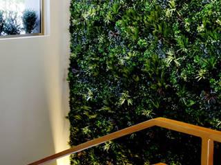 Wonder Wall - Jardins Verticais e Plantas Artificiais Modern Bahçe