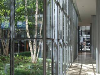 Edificios de oficinas de estilo moderno de Paul Marie Creation Garden Design & Swimmingpools Moderno