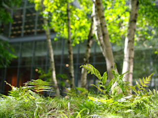 Espace vert intérieur Moderne Bürogebäude von Ecologic City Garden - Paul Marie Creation Modern