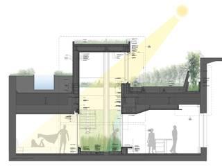 Roof terrace  & garden: modern  von Ecologic City Garden - Paul Marie Creation,Modern