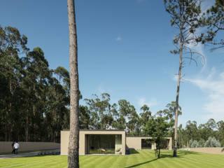Garten von Raulino Silva Arquitecto Unip. Lda, Minimalistisch