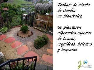 PRESENTACIÓN JCASCADAS JardínPlantas y flores