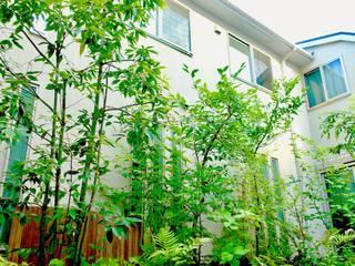 雑木の庭 お手入れ後: 庭や煌久が手掛けたです。