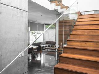 bởi TaAG Arquitectura Tối giản