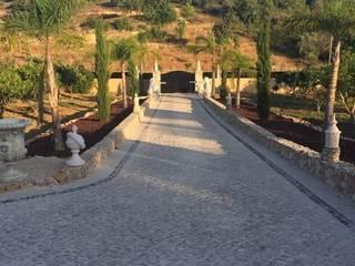 Construção de jardineiras em cascata pinho: Jardins de fachada  por Francisco jardinagem