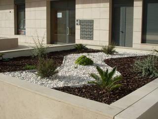 jardim pedra e casca de pinho : Jardins de pedras  por Francisco jardinagem