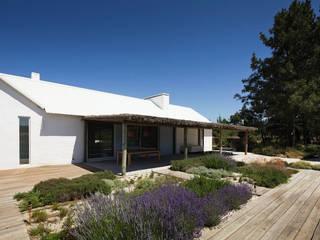 jardim pedra e casca de pinho : Jardins de fachada  por Francisco jardinagem