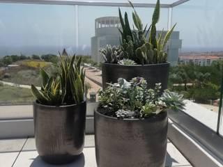 Rooftop em Oeiras: Terraços  por Comércio e Serviços, Lda.,Moderno