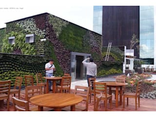 Roof Garden San Angel Jardines modernos de Designo Arquitectos Moderno