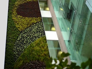 Muros Verdes Espacios comerciales de estilo ecléctico de Designo Arquitectos Ecléctico