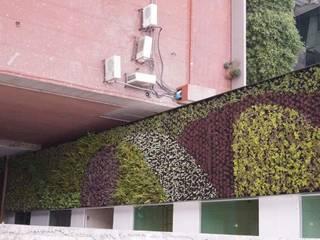 Muros Verdes Edificios de oficinas de estilo ecléctico de Designo Arquitectos Ecléctico