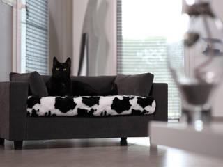 Banquette de luxe pour chats et chiens:  de style  par GIUSYPOP