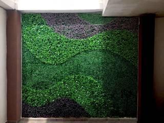 Modern Koridor, Hol & Merdivenler Dahlia Garden Boutique Modern