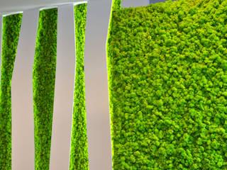Zielone Ściany z Mchu : styl , w kategorii Ściany zaprojektowany przez JUKO Green Design