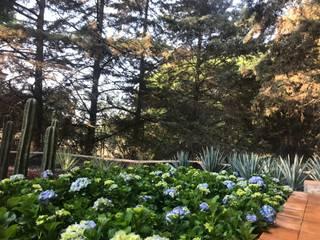 Azotea verde: Jardines de estilo  por ANVERSO