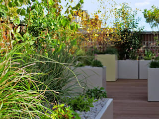 Holborn rooftop by MyLandscapes Garden Design Сучасний