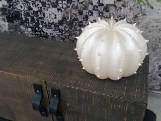 Lampada Desert Light modello Echinocactus Pearl:  in stile  di SeFa Design by nature