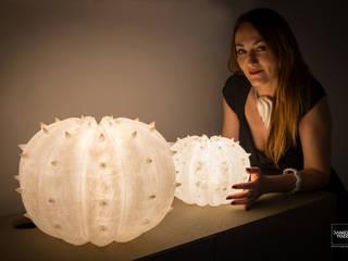 Desert Light modello Echinocactus , misure S e M:  in stile  di SeFa Design by nature