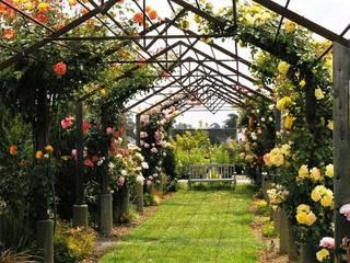 Six Essential Tools Every Gardener Needs Oleh Homify Blog Modern