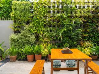 D' Architects Studio Modern style gardens