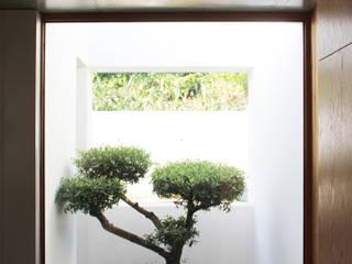 Oleh Qiarq . arquitectura+design Minimalis