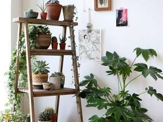 Ideas para decorar con plantas Pasillos, vestíbulos y escaleras de estilo moderno de Decopot.es Moderno