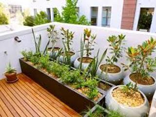 Ideas para decorar con plantas Jardines de estilo moderno de Decopot.es Moderno