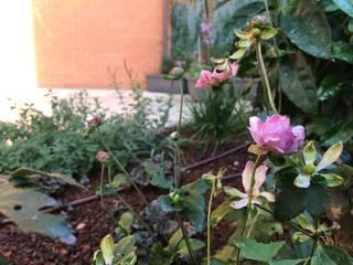 Un giardino trasformato di Au dehors Studio. Architettura del Paesaggio