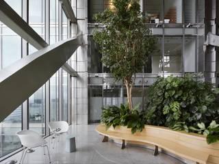 Pracownia Projektowa Poco Design Industriale Bürogebäude