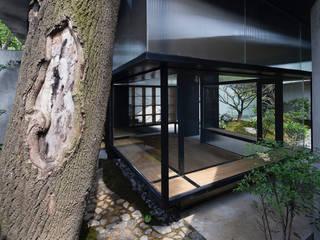 Tiny Japanese House et Jardin de même inspiration Asiatische Häuser von Ecologic City Garden - Paul Marie Creation Asiatisch