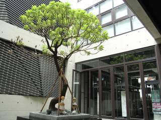 中庭全景-1:   by 鵝牌氣密窗-台中直營店
