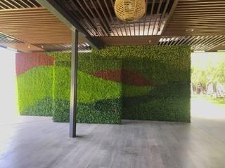 ทันสมัย  โดย Arquitectura Orgánica Viviana Font , โมเดิร์น