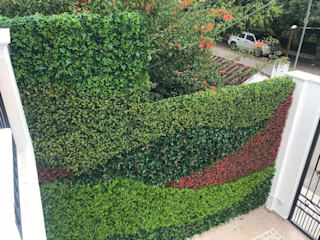 Arquitectura Orgánica Viviana Font Balcones y terrazasPlantas y flores